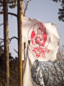 lama foundation red buddha prayer flag